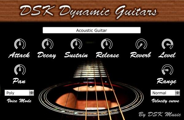 DSK Dynamic Guitar