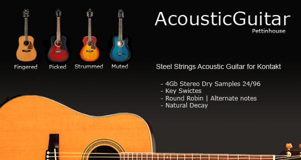 Pettinhouse Free Acoustic Guitars