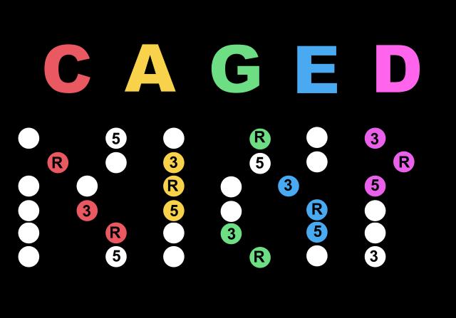cagedシステム