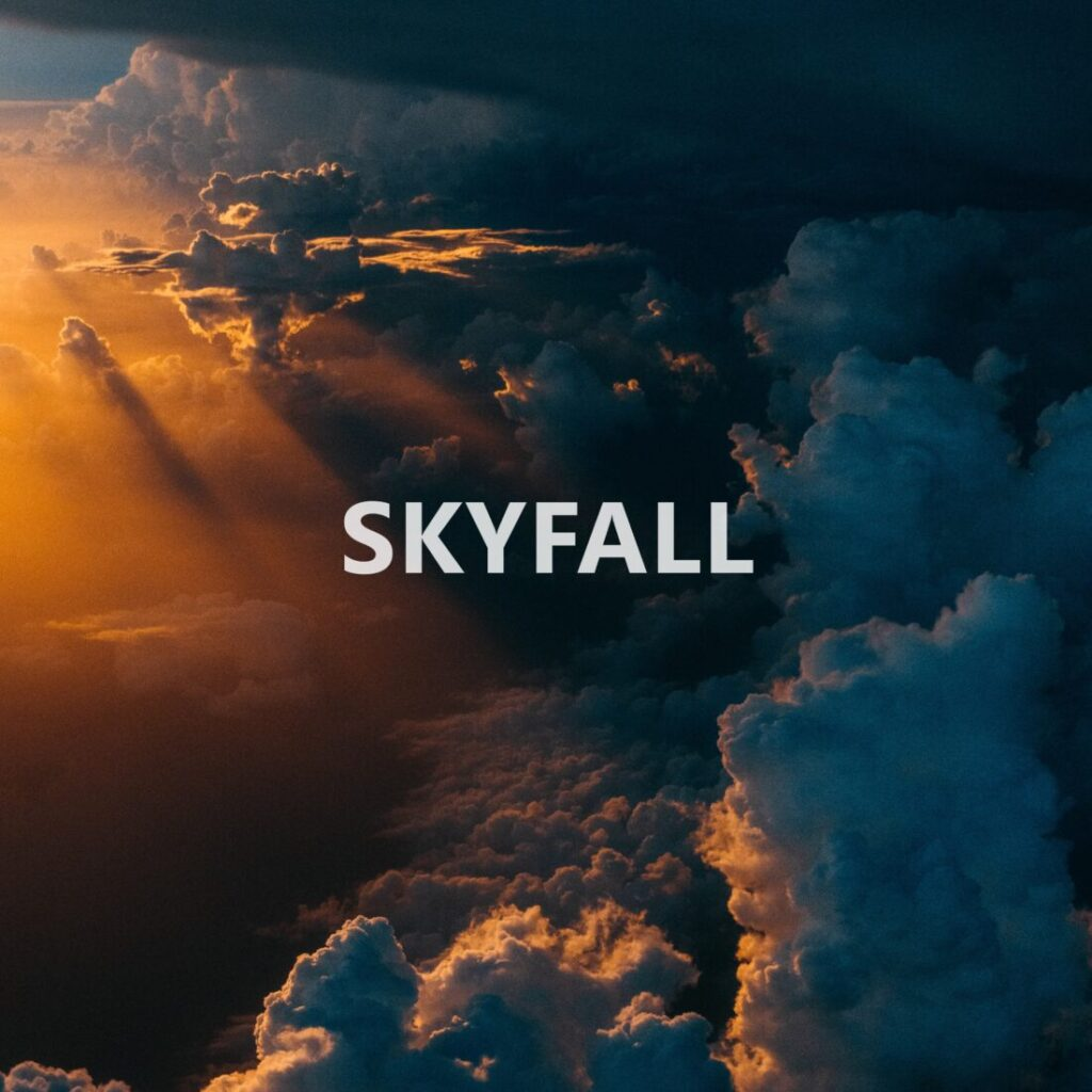 Skyfall ジャケ