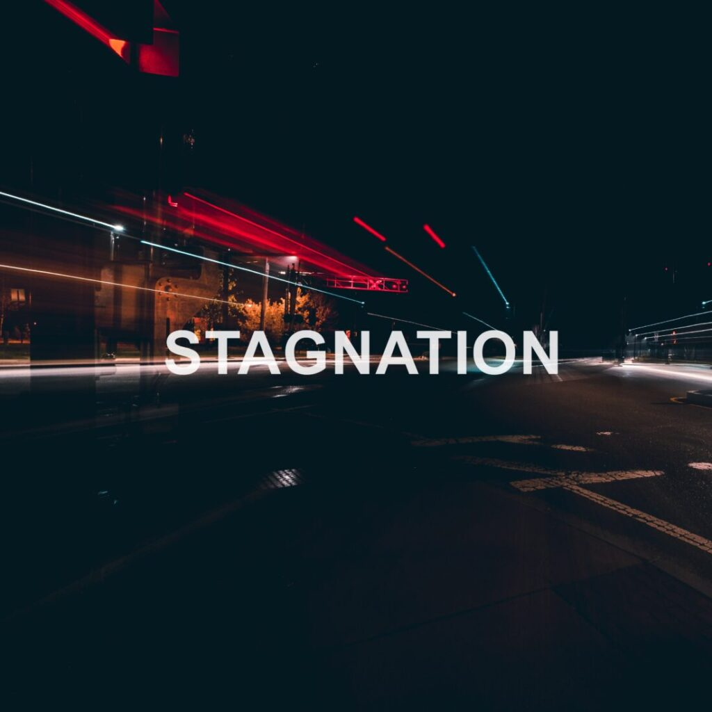makoto fukami stagnation